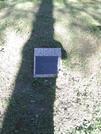 Захоронение ID 192294