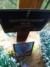Захоронение ID 195896