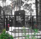 Братская  могила г. Червень 809