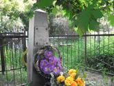 Братская  могила д. Горковская Слобода 868