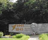 Братская  могила д. Турец 869