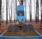 Братская могила  д. Дружная 4447