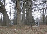 Братская  могила д. Беларучи 1018