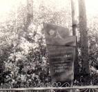 Братская  могила д. Малиновка 953