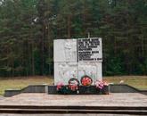 Братская могила г. Скиделя 5557
