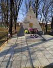 Братская могила агр. Великий Бор 7810