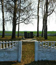 Братская могила д. Добрынь 6832