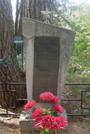 Братская могила  д .Крынка 3333
