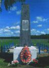 Братская могила  д. Евсеевичи  7206