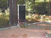 Братская могила  д. Николаевка 7218