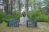 Братская могила д. Канаши 4365
