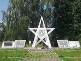 Братская могила  д. Новый Болецк 4379