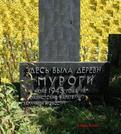 Братская могила д. Муроги 5267