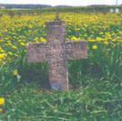Братская могила аг. Боруны 6977