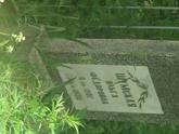Захоронение ID 610959
