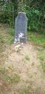 Захоронение ID 925513