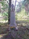 Братская могила д. Белый Берег 6000